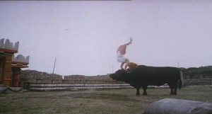 The bull did all his own stunts.